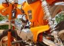 Dax - Electric Orange 02
