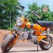 Dax - Electric Orange